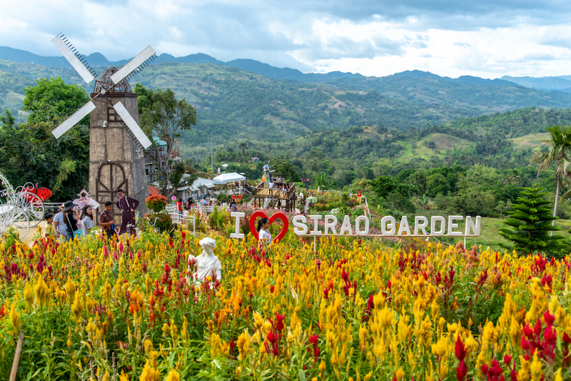 Sirao Flower Farm-Tourist Spots That are Worth Flying to Cebu For